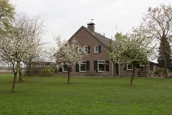 groot appartement (90m2) in rustige omgeving - Nuenen - Bed & Breakfast