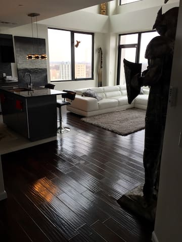 Executive duplex Penthouse - East Orange - Loft