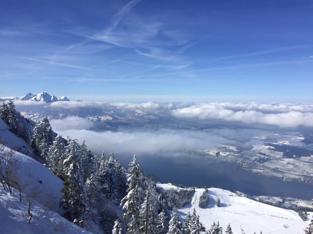 Rigi the place that likes nature - Arth - Daire