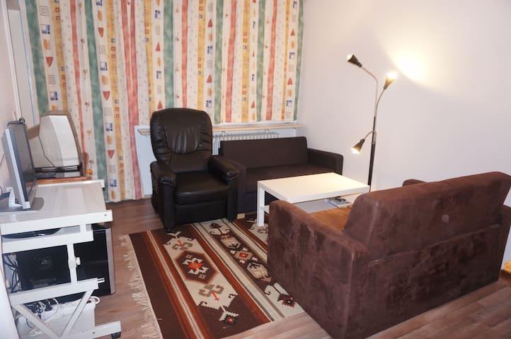 Квартира 3 комнаты на 4 человека - Bischofsmais - Leilighet