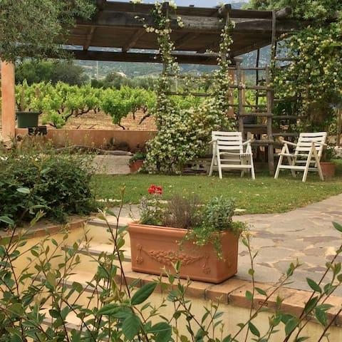 Casa con giardino con pergola - Orosei - Leilighet