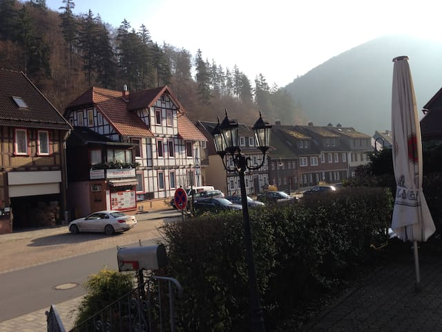 Lovely Apartment in South Harz, Balcony, Wifi - Zorge - Leilighet