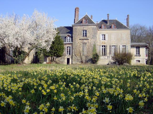 Le Petit Château de la Brosse - Nottonville - Oda + Kahvaltı