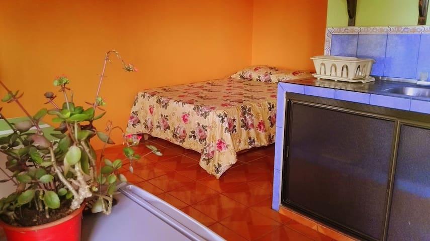 Private Apartment with AC (5) - La Fortuna - Lägenhet