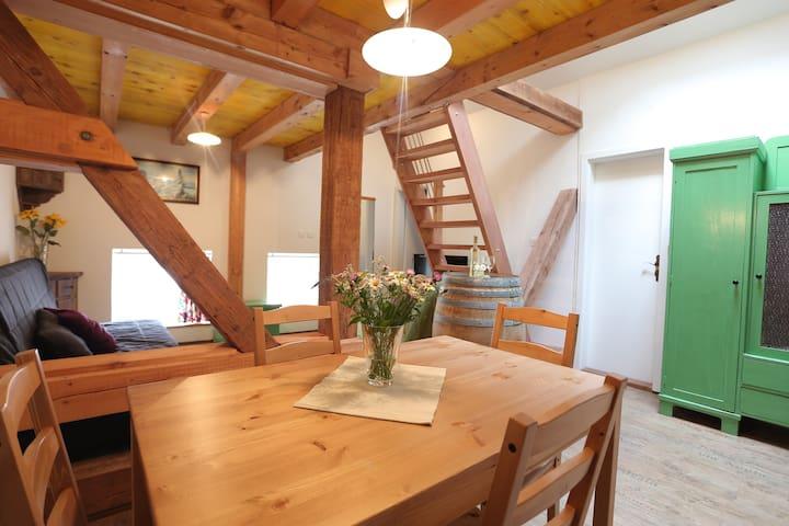 Apartment Soca Tolmin - Tolmin - Appartement