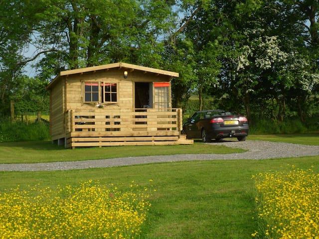 Glamping Cabin 2 - Brocklebank - Stuga