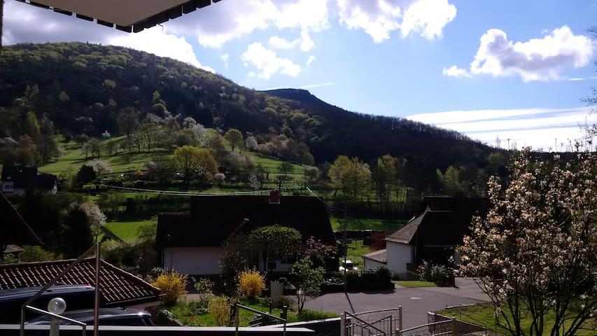 Ferienwohnung für Ruhe & Erholung - Dernbach - Haus