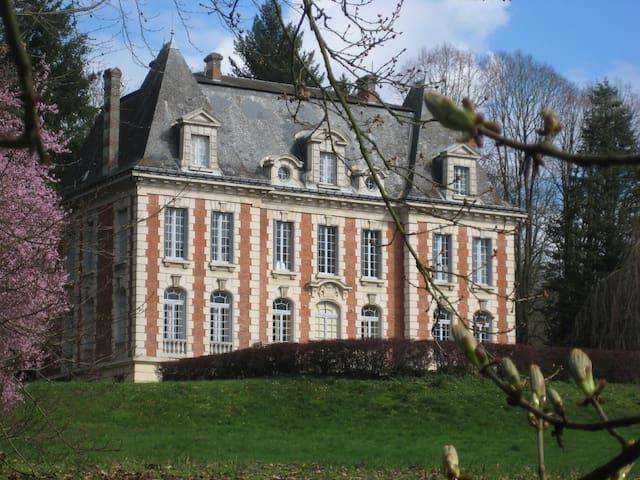 Château de Pancy - Montgolfière - Pancy-Courtecon - Bed & Breakfast