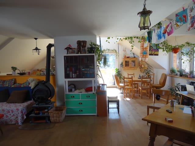 Gemütliche Wohnung in Zentrums nähe - bad ischl - Apartament