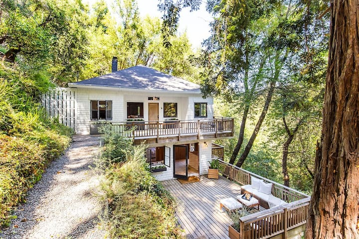Serene Mill Valley gem in the redwoods - Mill Valley