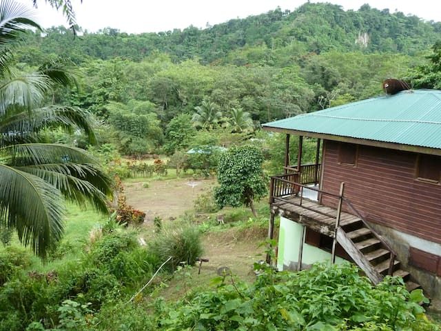 Private penthouse at eco lodge - Rosalie - Appartement