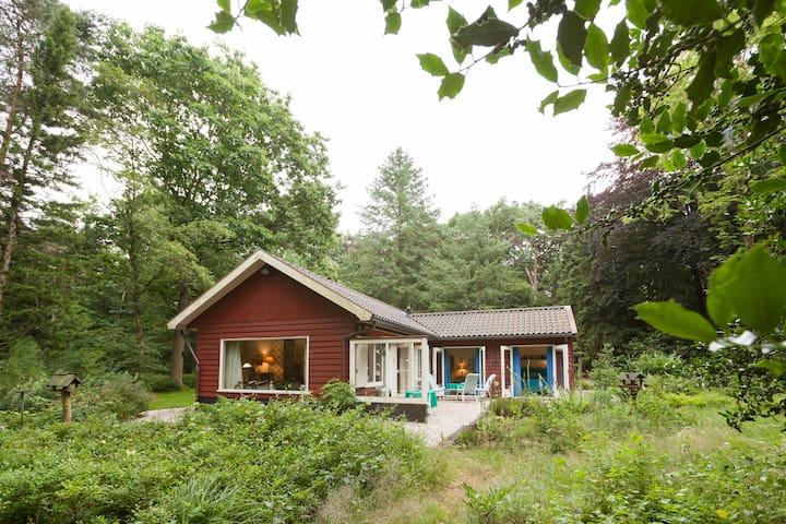 Prachtig natuurhuis in eigen bos - Epe - Cabaña