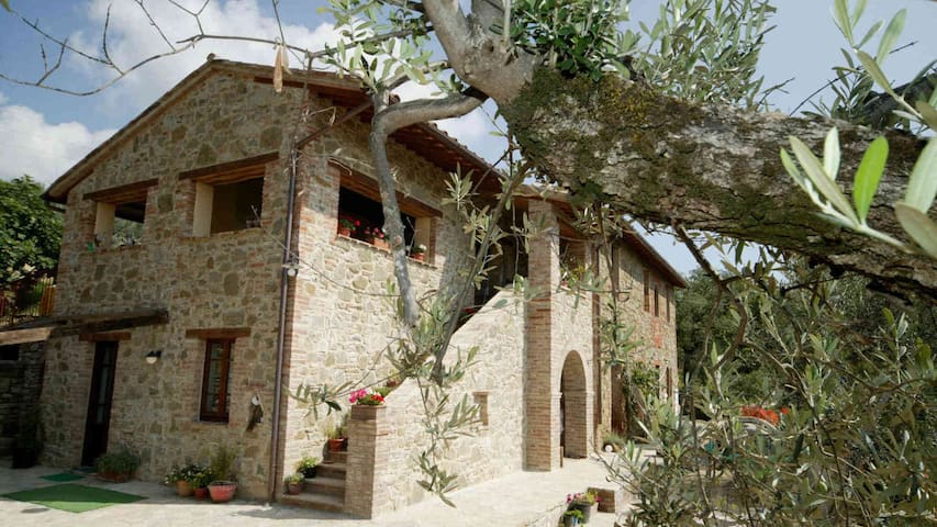 CASA LORENZO ~ OLIVA ~Stunning rural apt with pool - Colle Calzolaro - Daire