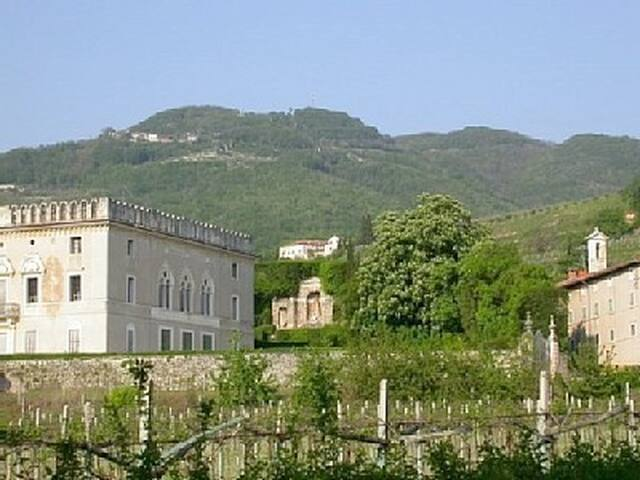 Il Castello - romantic farmhouse in Valpolicella - Negrar - 別荘