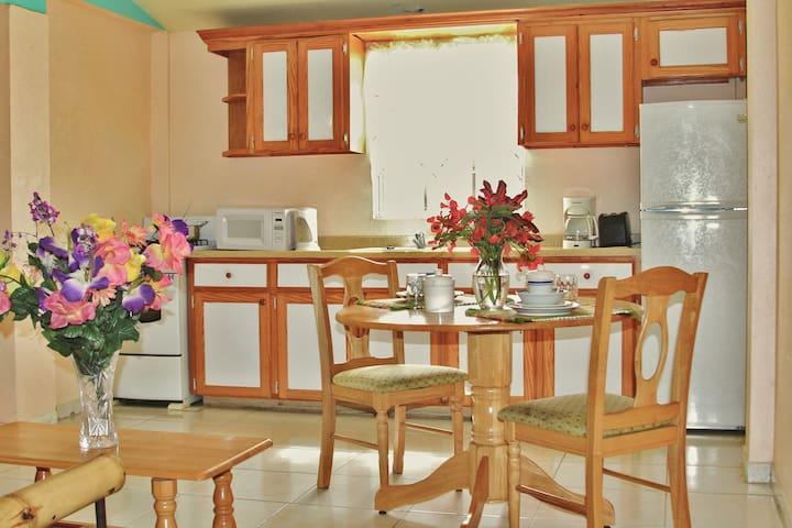 Caribbean Holiday Apartments - Saint John's - Daire