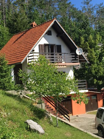 Charming Villa with an amazing view - Fužine - Villa