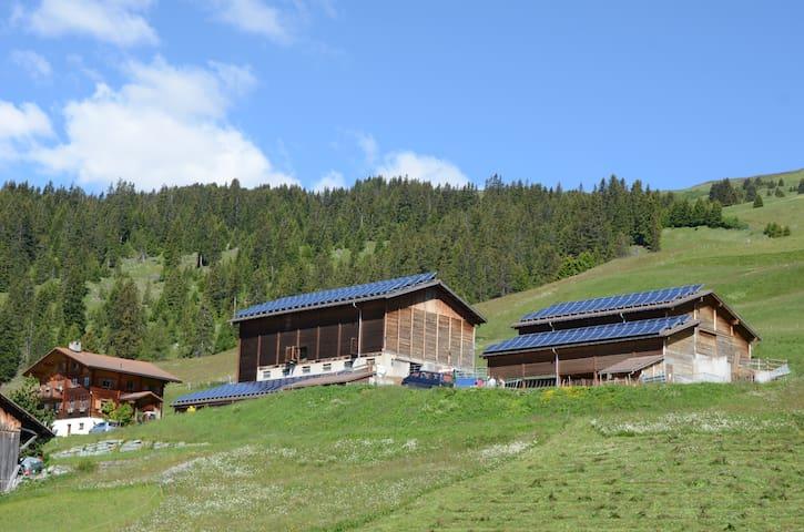 Ferien auf dem Bauernhof - Mathon - Tatil evi