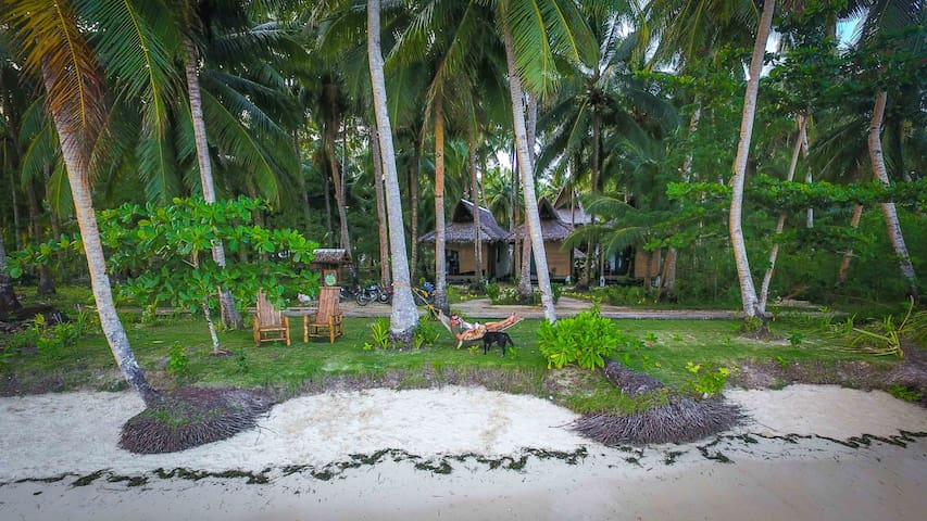 Surfing Carabao Beach House 1 - General Luna
