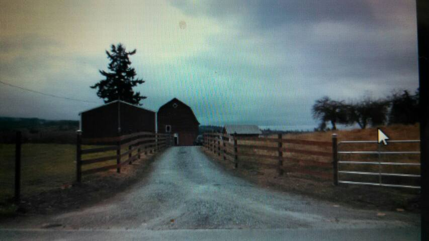 country living in a 40 acres farm - Stanwood - Huis
