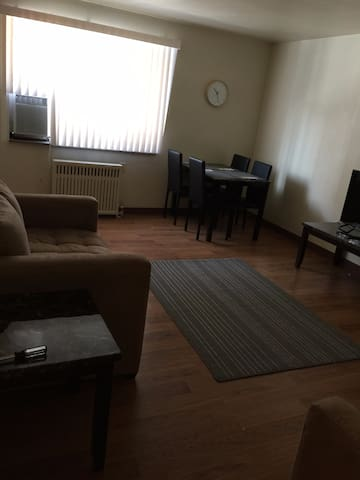 Sunny Spacious Shadyside 1 bedroom - Pittsburgh - Leilighet