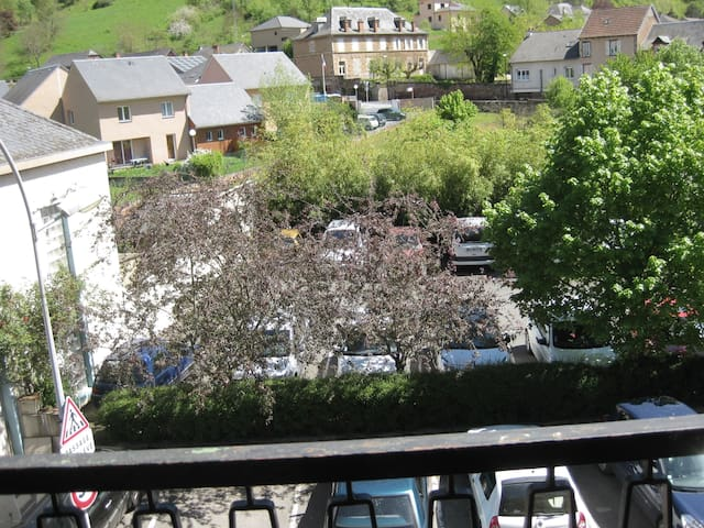 Appartement tout confort 2em etage - Marcillac-Vallon - Appartement