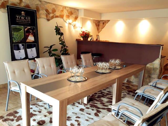 Milagrose Luxury Villa with Private Bar - Budapeste - Vila
