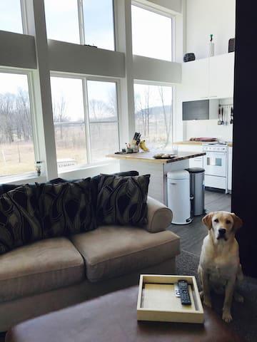 Sunny 2BDR + Garage, 5 min from DT - Fitchburg - Departamento