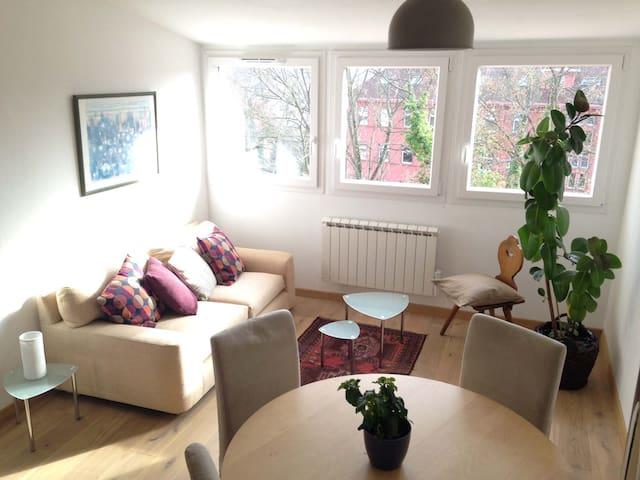 Côte de Saverne, beau et lumineux appartement 3-4P - Saverne - Lägenhet
