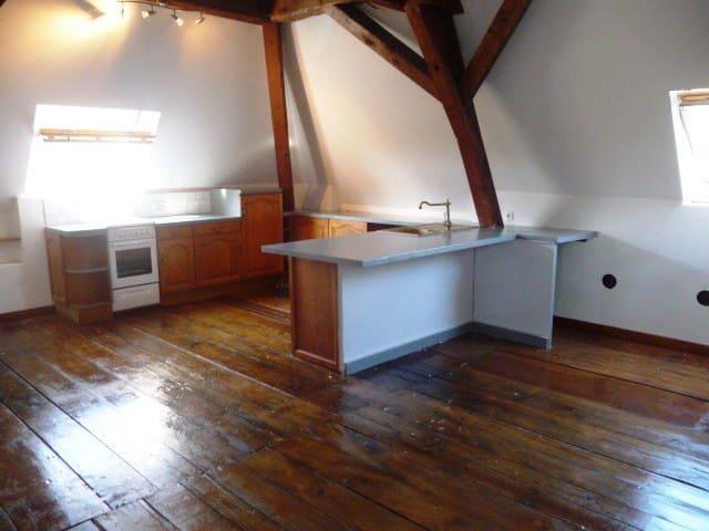 Bel appartement 100m² mansardé en pleine nature - Saint-Blaise-du-Buis - Lägenhet