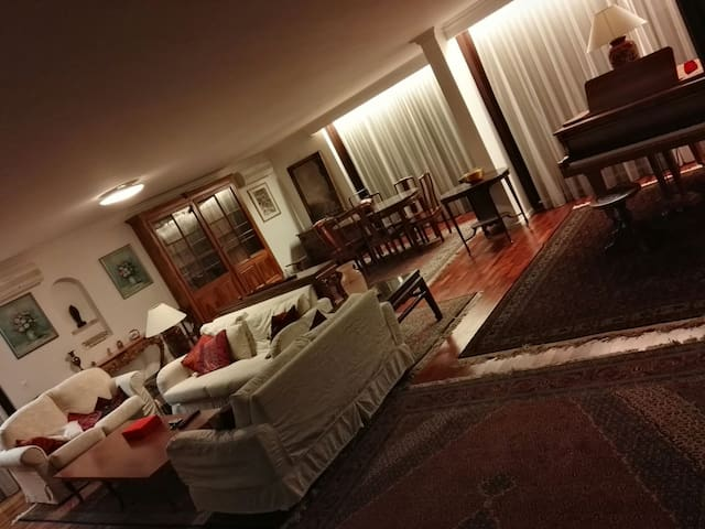 Accogliente e lussuoso appartamento - Basel - Lägenhet