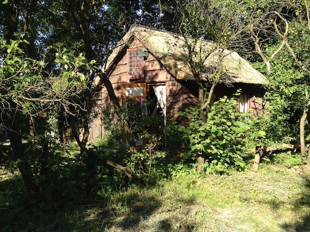 Heksenhuisje midden in het bos - Uffelte - Chatka