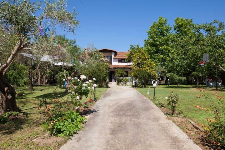 Green Villa and a Sandy Beach! - Epanomi - Villa