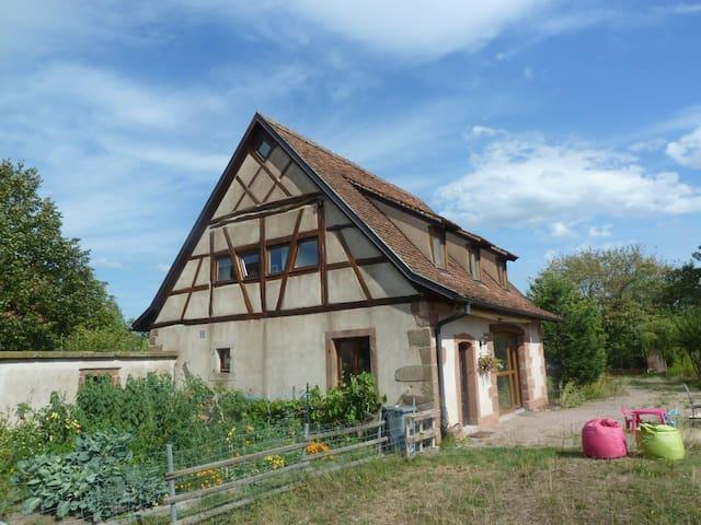 Gîte les Cigognes - Neuwiller-lès-Saverne