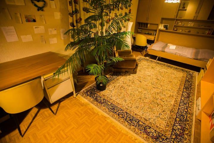 Spacious room 01 in villa @ airport - Steenokkerzeel - Villa