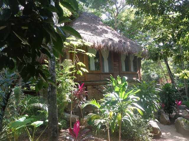 Chalet in the Jungle - Tulum - Bed & Breakfast