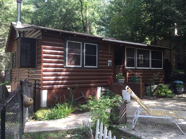 Cozy Smallwood Catskill Cabin - Smallwood - Houten huisje