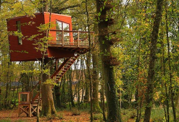 Le Nid Penché - Saint-Amand-en-Puisaye - Casa en un árbol