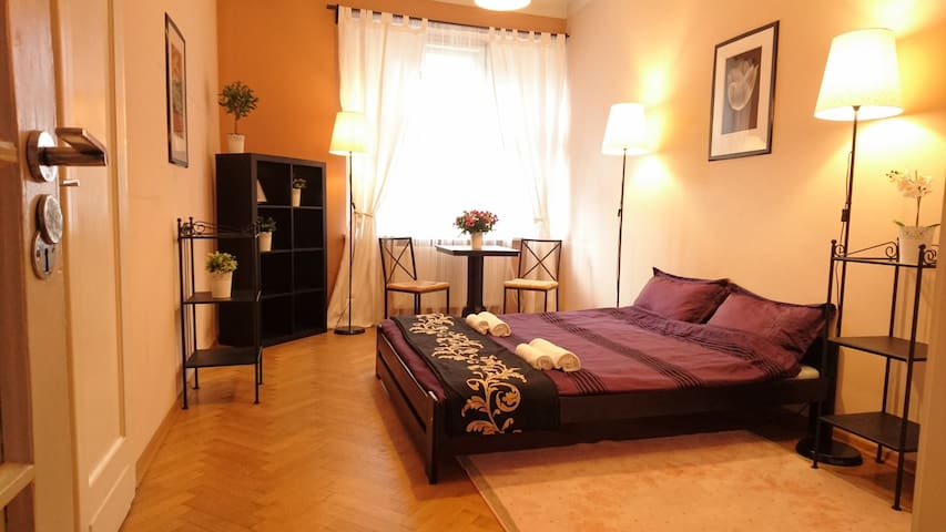Very nice room in the old town - Cracovie - Appartement
