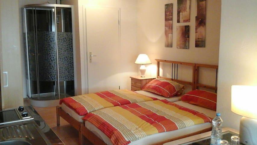 Sonniges Appartement am Ökosee Dillingen bei SLS - Dillingen/Saar - Hus