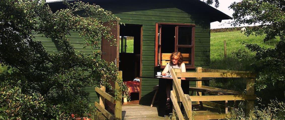 The Shepherds hut - Lancashire - Chatka
