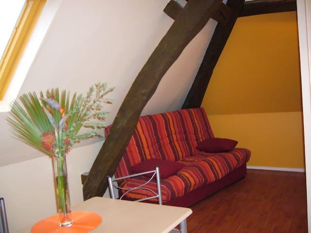 Studio sous les toits, proche châteaux de la Loire - Château-Renault - Appartement