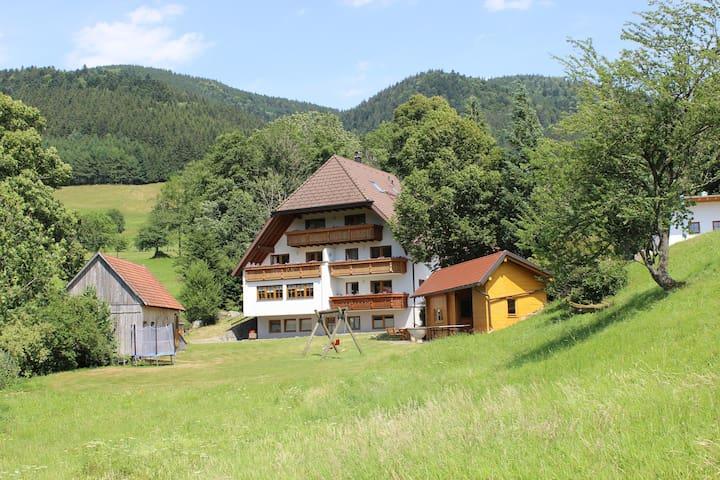"""Ferienwohnung """"Bergwiese"""" Hugenhof - Simonswald - Apartemen"""