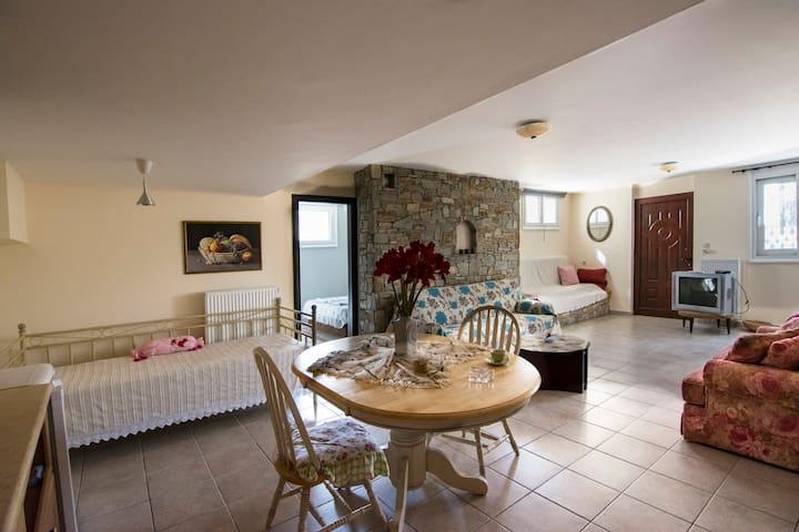 One bedroom flat in a Seaside Villa - Nea Anchialos - Villa