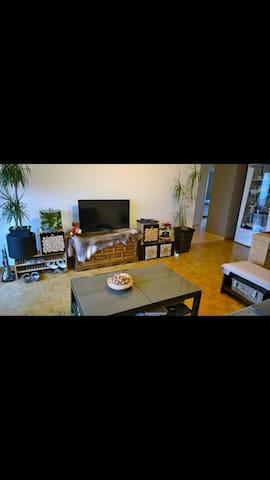 Furnished flat close to the airport Zurich - Kloten - Apartamento