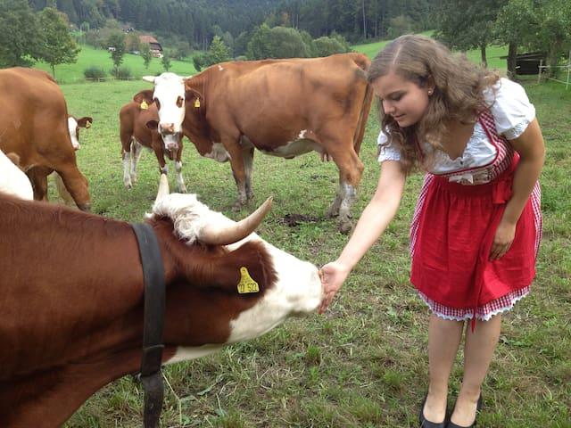 Bauernhof im Schwarzwald - Zell am Harmersbach - Selveierleilighet