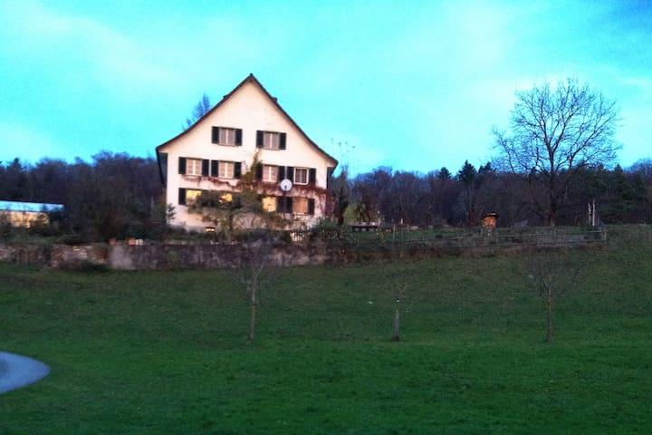 Gemütliches Zimmer im Grünen (40Min.ÖV von Zürich) - Eschenbach - Szoba reggelivel