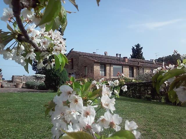 Luxury Panoramic Rentals in Toscana - Barberino Val d'Elsa - House