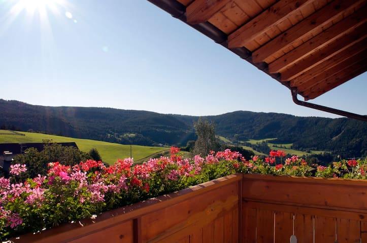 Appartments Tratter . Ferienwohnung Mölten - Salonetto - Apartemen