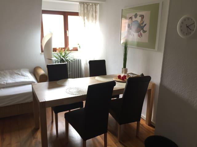 Gemütliche, freundliche Wohnung in ruhiger Lage - Mannheim