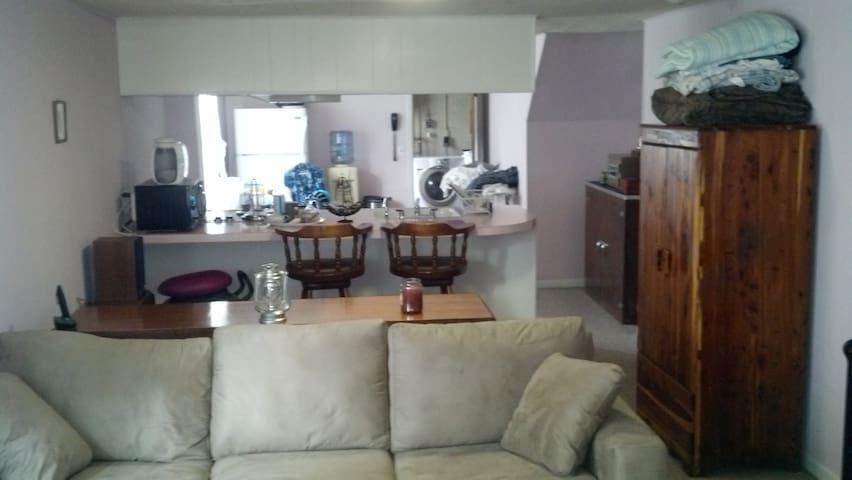 Private Downstairs Apartment - Fort Washington - Leilighet